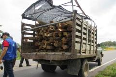 decomiso_madera_3_m